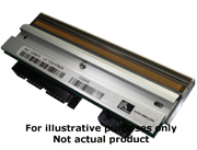 Zebra ZM600 / 203dpi replacement printhead (79803M)